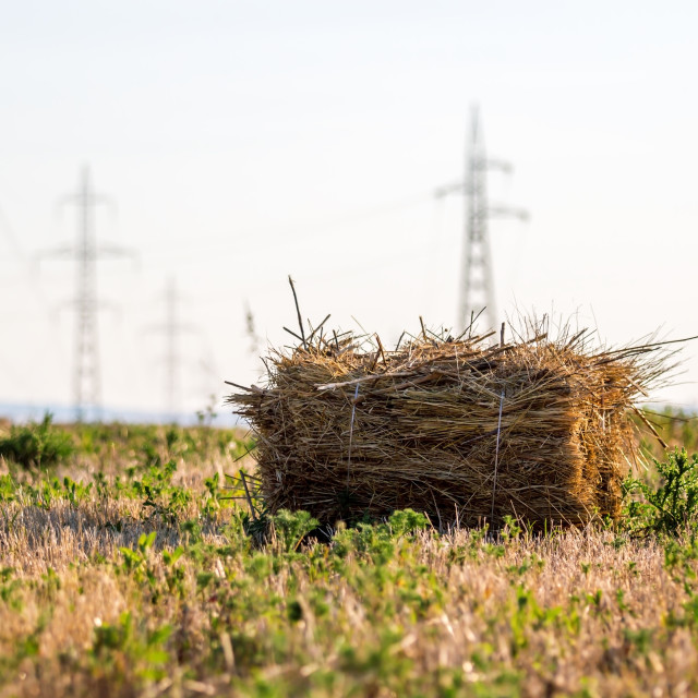 """Straw bales field"" stock image"