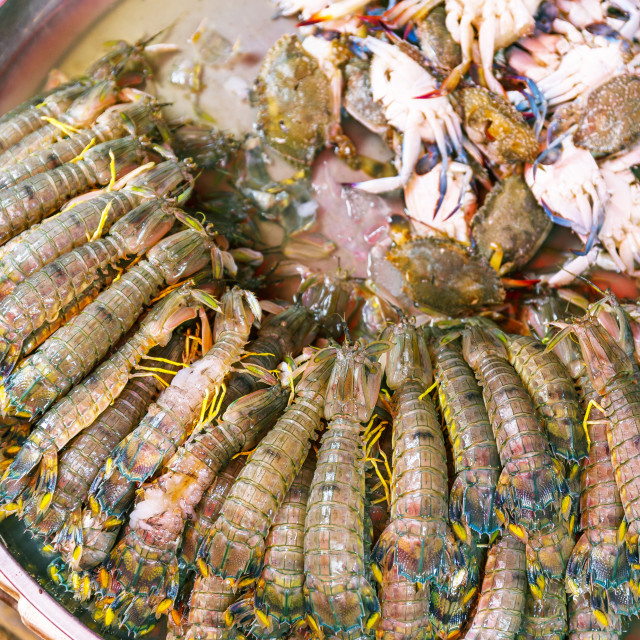 """""""Fresh seafood in the wet market"""" stock image"""