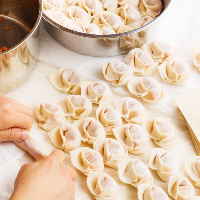 """""""Homemade dumpling"""" stock image"""