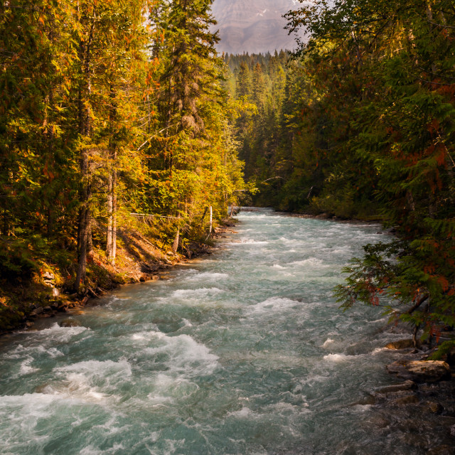 """Canada - The River Robson"" stock image"