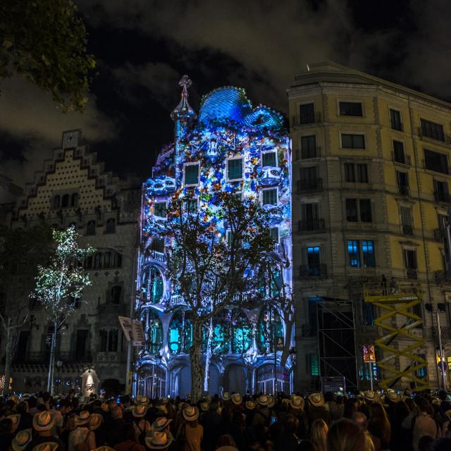 """Casa Batllo by Antoni Gaudi"" stock image"