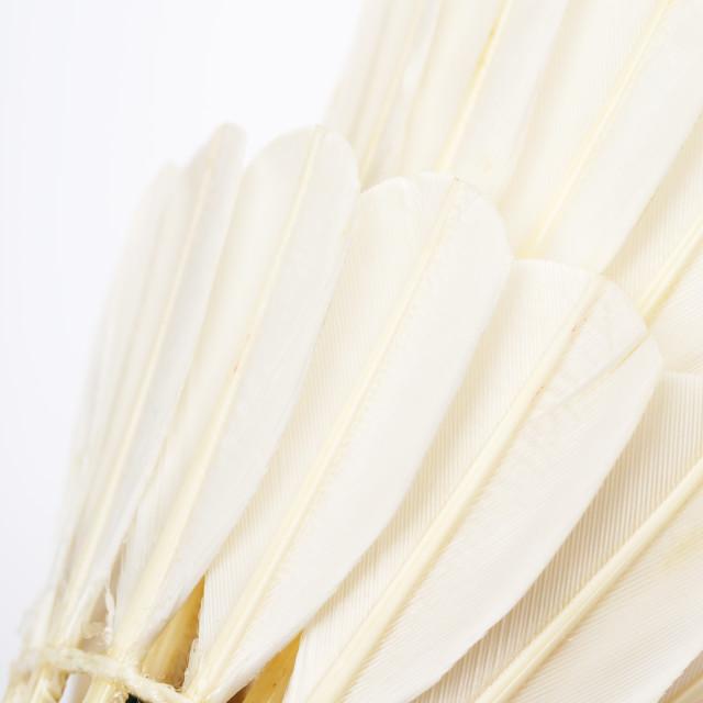 """Badminton racket close up"" stock image"
