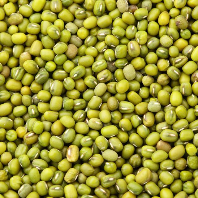 """Mung bean background"" stock image"