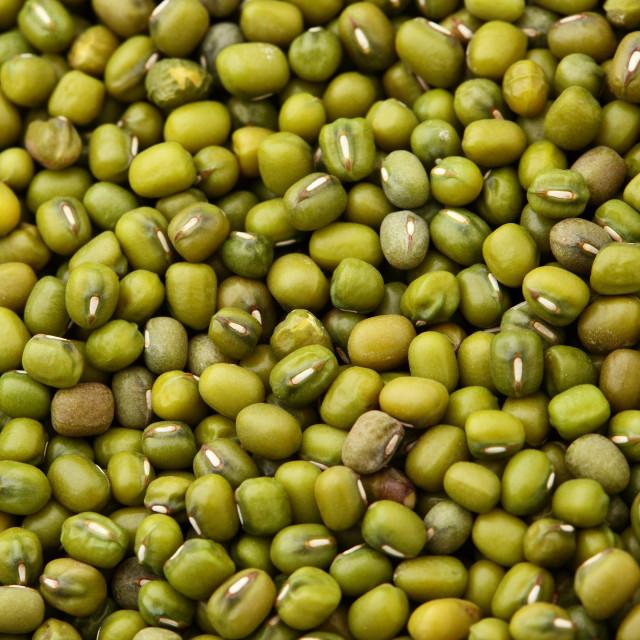 """""""Mung bean close up"""" stock image"""