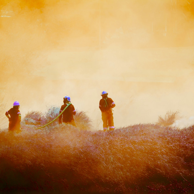 """Firemen fighting a large bush fire"" stock image"
