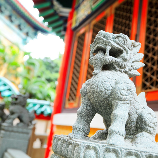"""Chinese stone lion"" stock image"