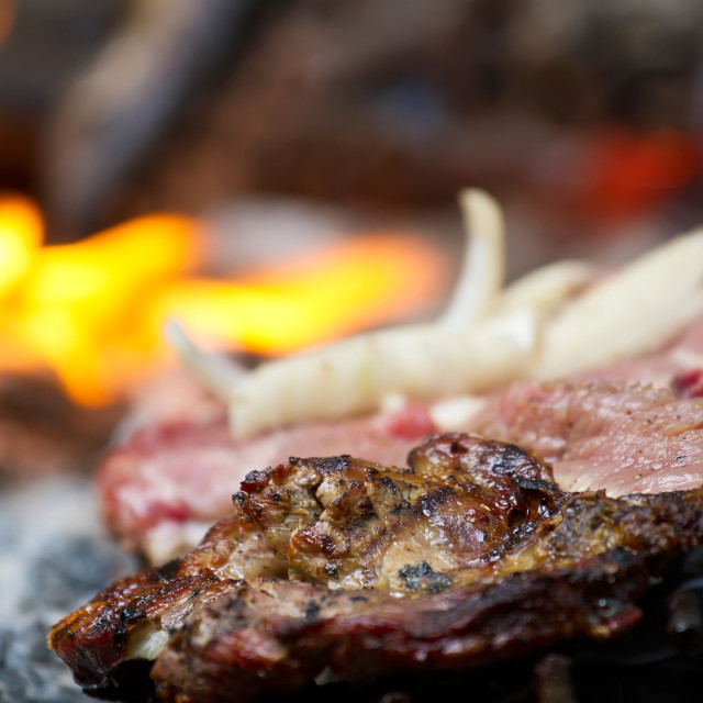 """""""Meat on wood coals"""" stock image"""