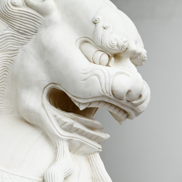 """""""Chinese lion statue close up"""" stock image"""