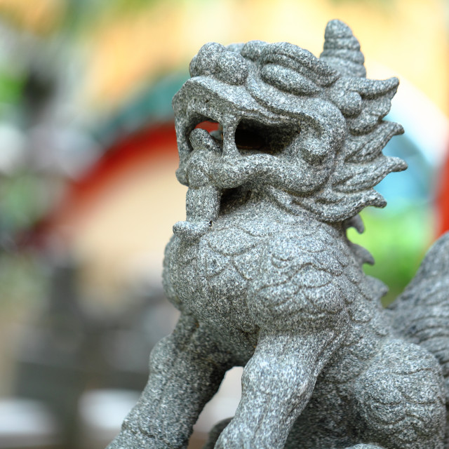 """chinese lion statue"" stock image"