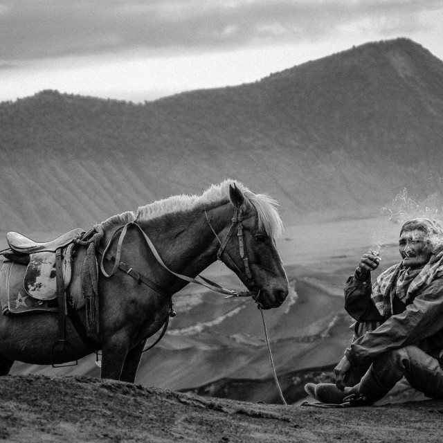 """Horseman at Bromo"" stock image"