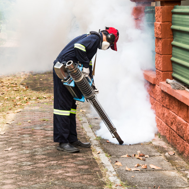 """""""Worker fogging drain at residential area with insecticides to ki"""" stock image"""