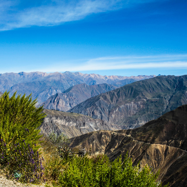 """View over Colca Canyon"" stock image"