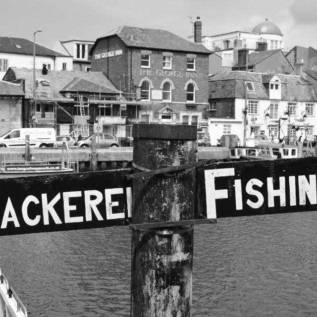 """Mackerel fishing"" stock image"
