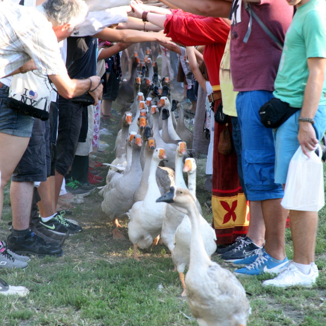 """Renaissance Festival, Koprivnica, Croatia, 2015, 59"" stock image"