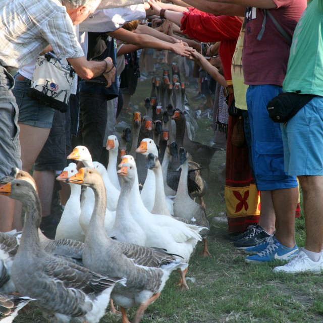 """Renaissance Festival, Koprivnica, Croatia, 2015, 60"" stock image"