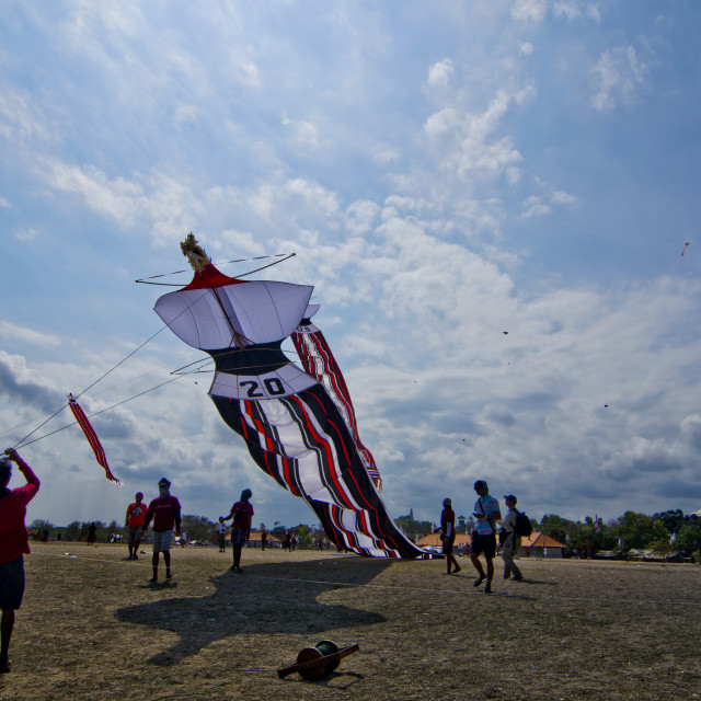 """kite festival"" stock image"