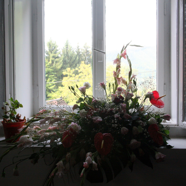 """View from churchs window"" stock image"