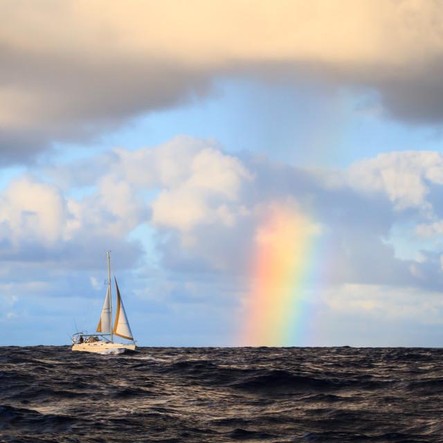 """Sailing in Hawaii"" stock image"