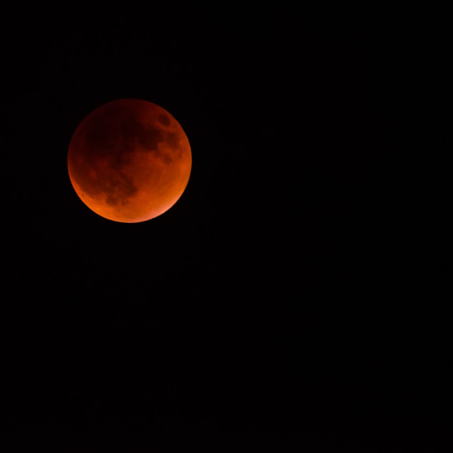 """Total Supermoon Lunar Eclipse"" stock image"