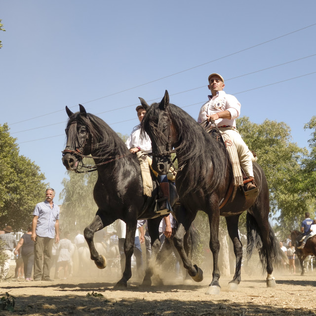 """Men on horse during romeria"" stock image"