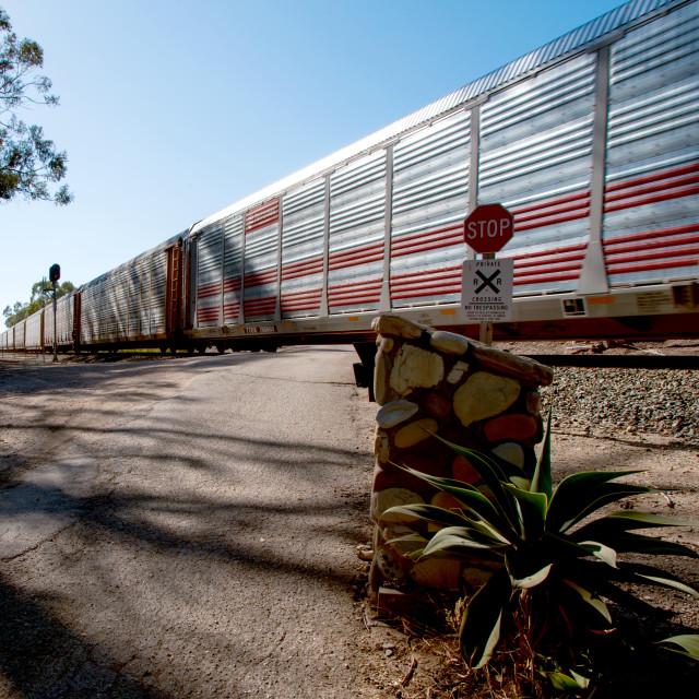 """The Train I ride"" stock image"