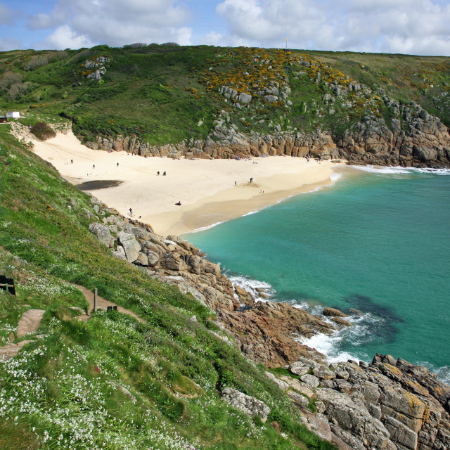 """Looking down onto Porthcurno Cove Cornwall, England, UK from a narrow path on the hillside covered with wild flowers"" stock image"