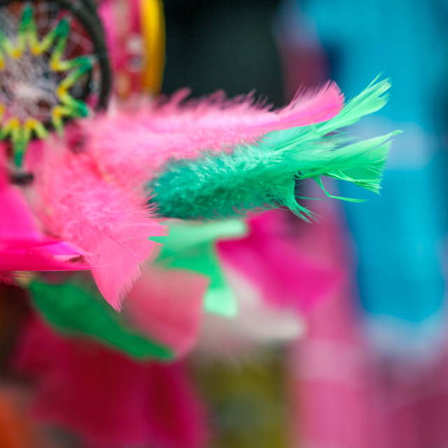 """""""Dream Catchers in the Wind"""" stock image"""