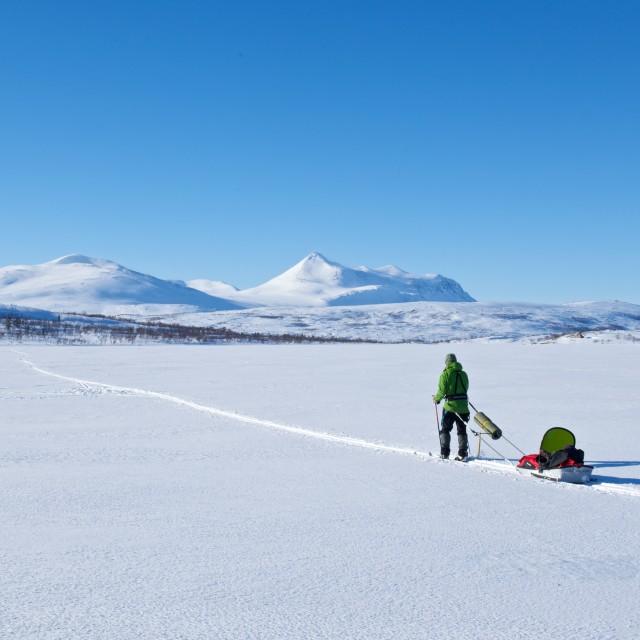 """""""Skiing in Saltfjellet"""" stock image"""