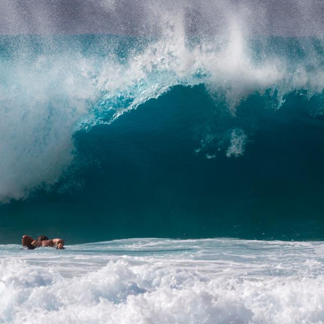 """Surfer diving under a wave"" stock image"