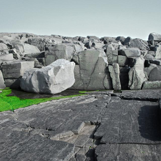 """Rocks with green algae."" stock image"