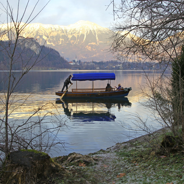 """A man rowing a Pletna, a covered wooden rowing boat, on Lake Bled Slovenia"" stock image"