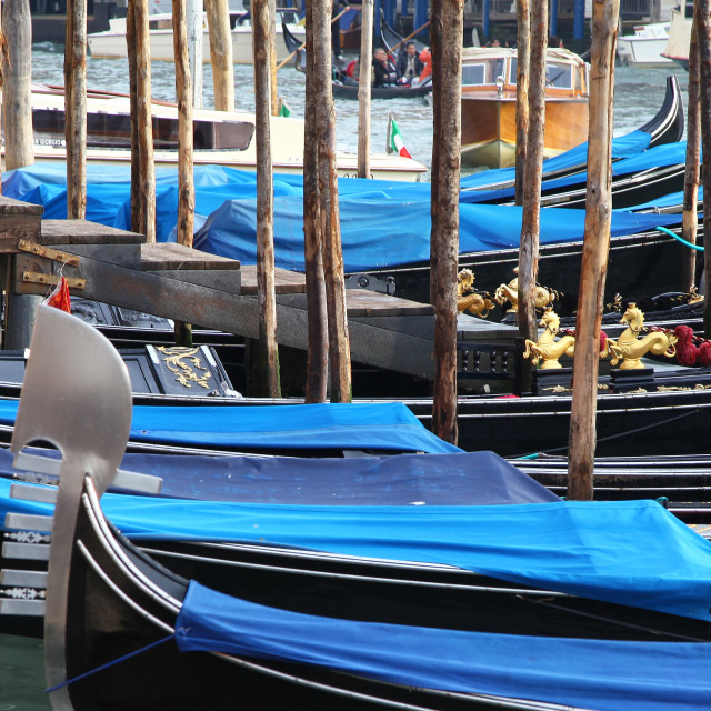 """Blue covered gondolas on the Grand Canal Venice Italy"" stock image"