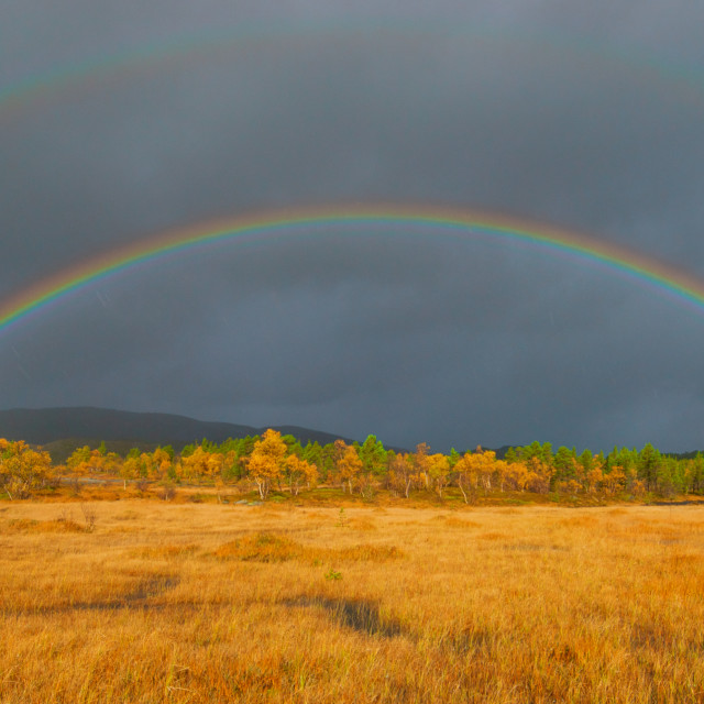 """two rainbows"" stock image"