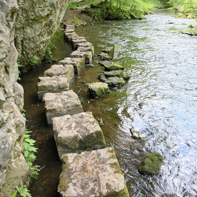 """Limestone stepping stones on the River Wye at Chee Dale, Derbyshire Peak District National Park, England, UK"" stock image"