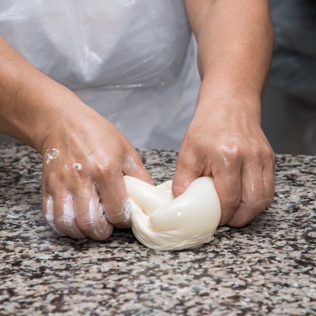 """close up of female hands kneading dough and making banitsa"" stock image"