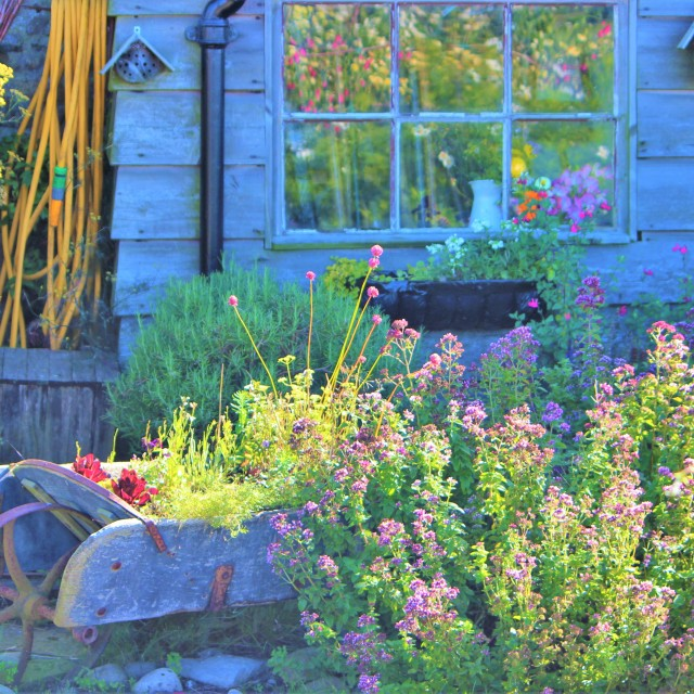 """Cottage Garden."" stock image"