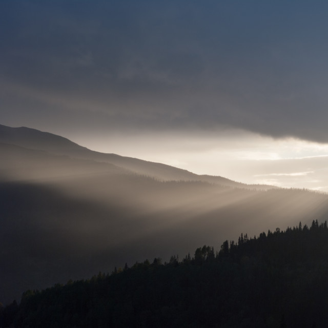 """""""Mist in the valley"""" stock image"""