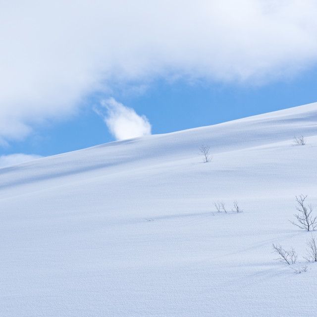 """snow and sky"" stock image"