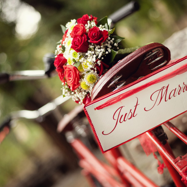 """Just married - bike and flowers"" stock image"