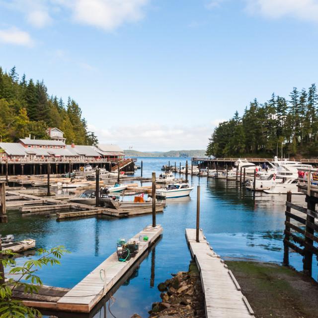 """""""Canada - Telegraph Cove"""" stock image"""
