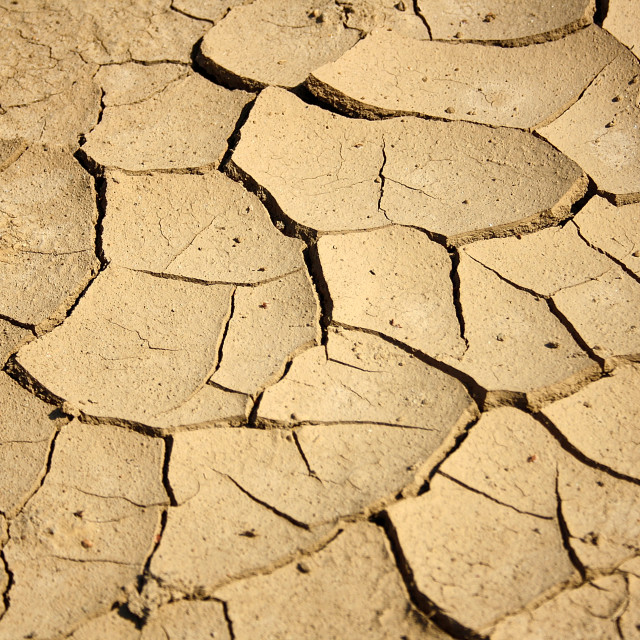 """Soil"" stock image"