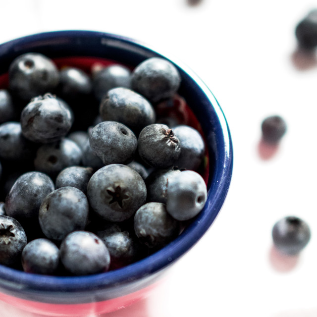 """blueberry pot"" stock image"