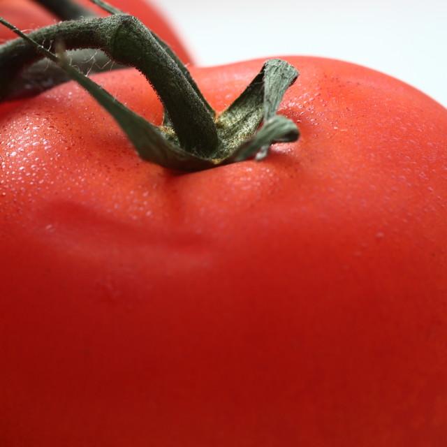 """Vine tomatoes"" stock image"