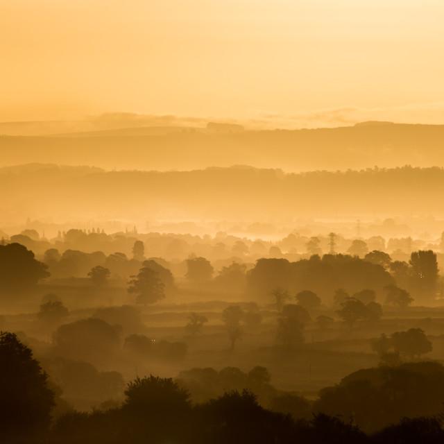 """""""Golden Sunrise Over Wiltshire, UK"""" stock image"""