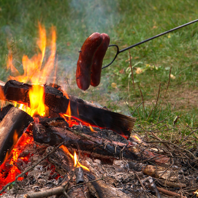 """Poland.Roasting sausages over a fire in nature.Horizontal"" stock image"