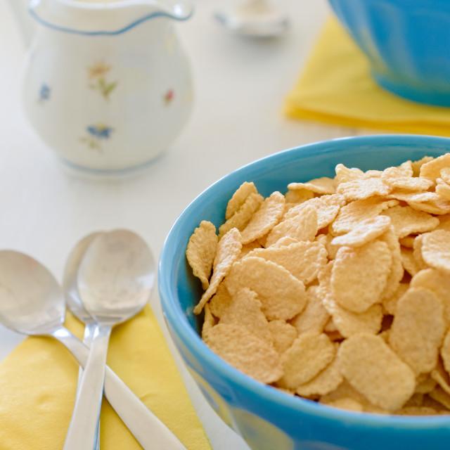 """Corn cereals with milk in blue ceramic pot"" stock image"