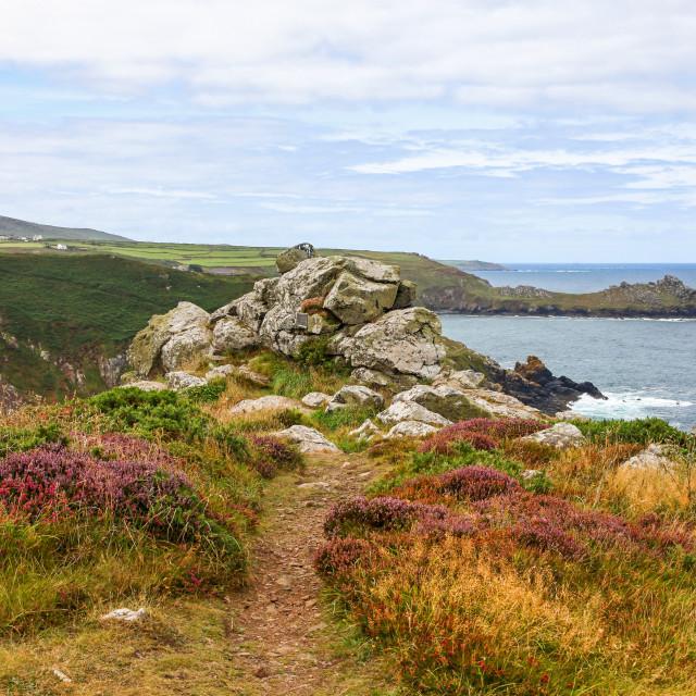 """Zennor Head looking towards Gurnard's Head Cornwall West Country England UK"" stock image"