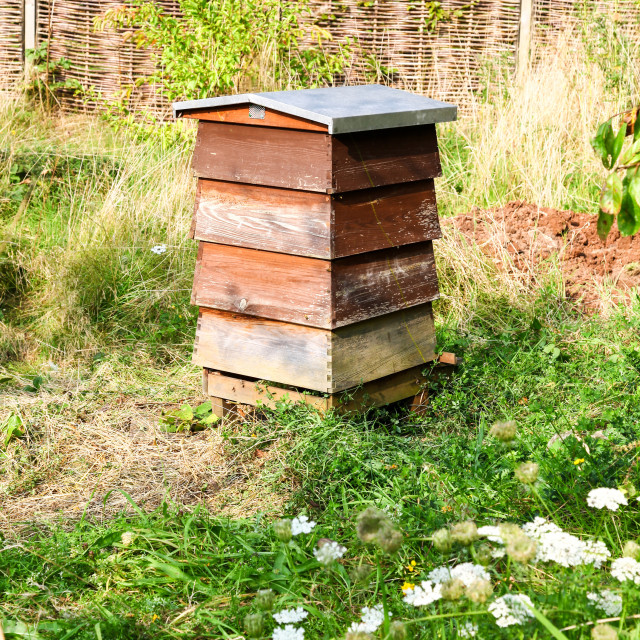 """""""A traditional wooden bee hive in a garden"""" stock image"""