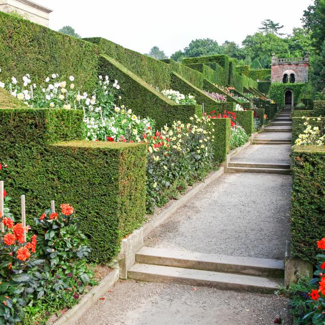 """The Dahlia Walk Biddulph Grange, Stoke-on-Trent, Staffordshire, England, UK"" stock image"
