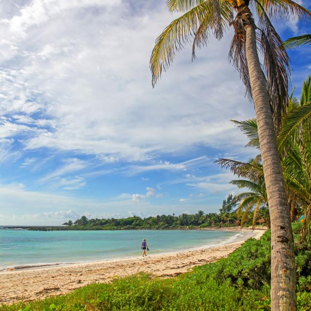 """""""A woman walking along a deserted beach at Riviera Maya Mayan Riviera Cancun Quintana Roo Yucatan Peninsular Mexico North America"""" stock image"""